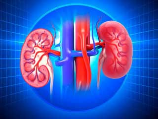 One Symptom That Indicates Kidney Failure in Diabetics