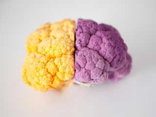 Foods to Fight Brain Cancer