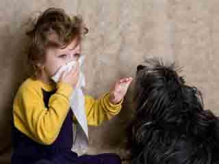 पालतू जानवरों से होने वाली एलर्जी से बचने के तरीके