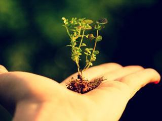 अर्थ डे : 5 कारणों से पर्यावरण हमारी सेहत को कर रहा प्रभावित