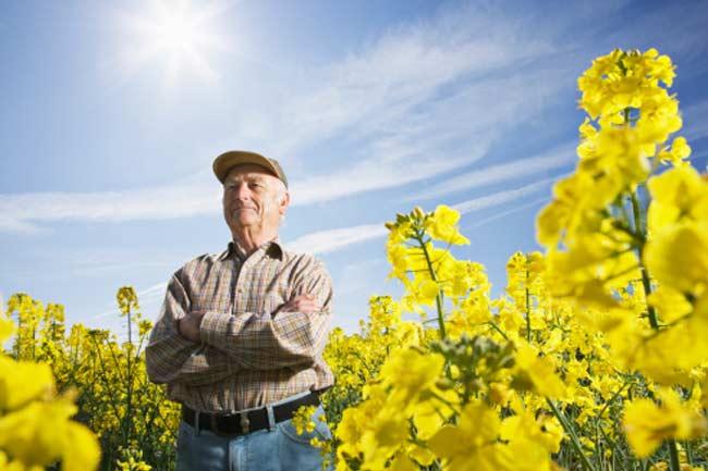 It might be a bio-pesticide