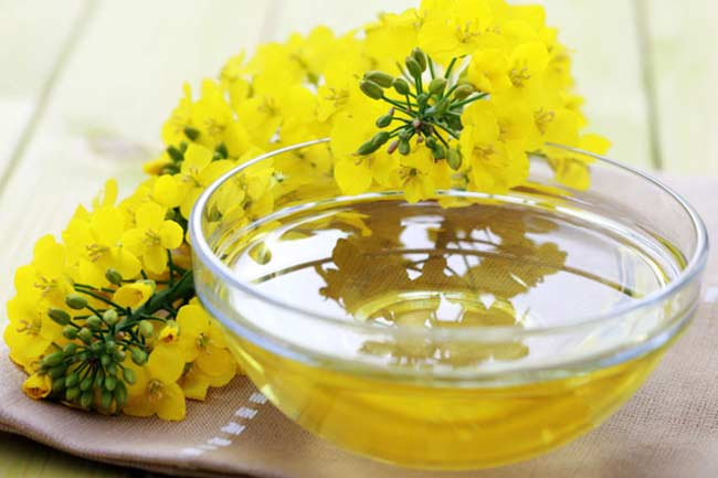 Is canola oil really healthy?