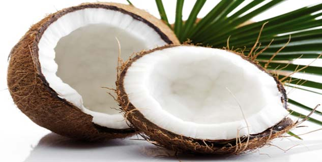 coconut oil in hindi
