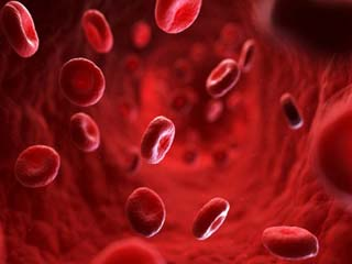 7 Best foods to increase blood platelets naturally