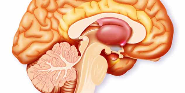 Types of adrenal gland disorders