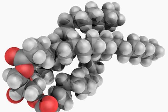 ट्राइग्लिसराइड