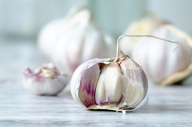 Garlic magic