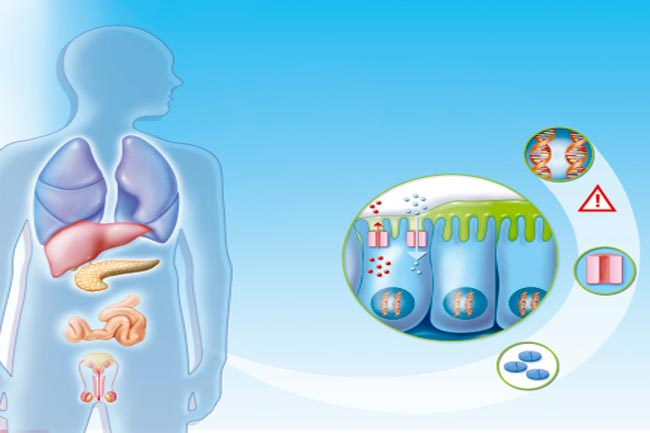 सिस्टिक फाइब्रोसिस क्या होता है