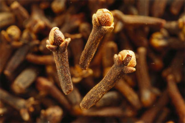 Cloves for denture pain