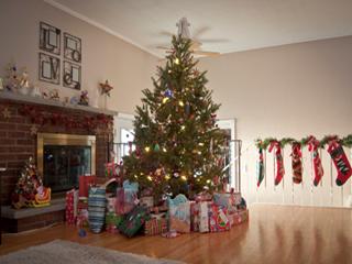 क्रिसमस ट्री और आपका स्वास्थ्य