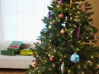 Christmas tree could make you sick for real