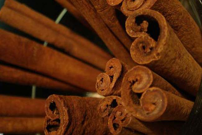 Cinnamon stem