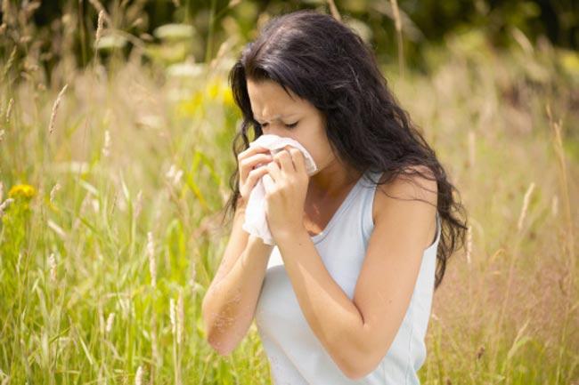 पौधों से एलर्जी