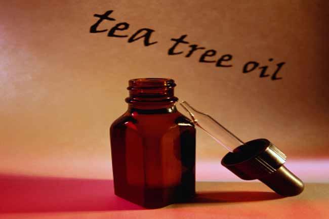चाय के पेड़ का तेल