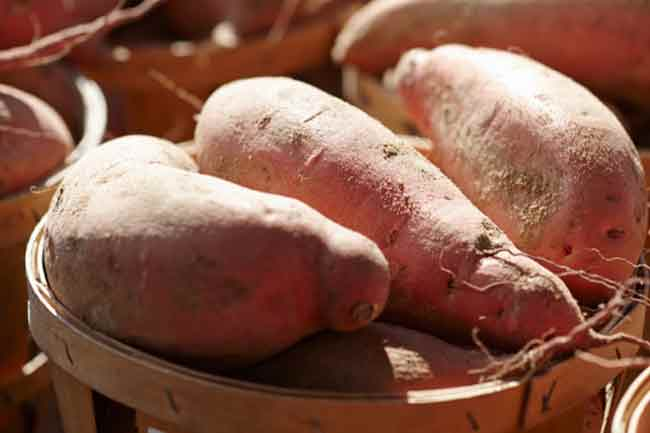 Include Sweet Potatoes in Diet