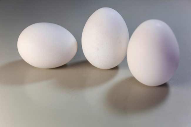 अंडा खाइये