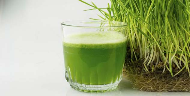 Wheatgrass for Diabetes