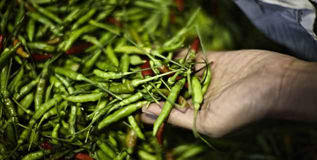 Health benefits of green chillies