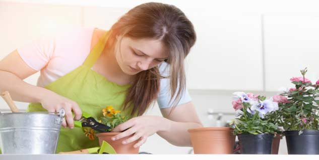 planting in hindi