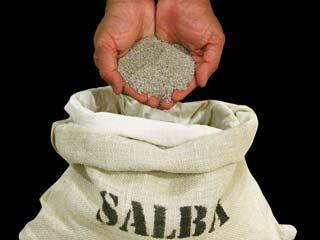 Health Benefits of salba seeds (mint leave seeds)