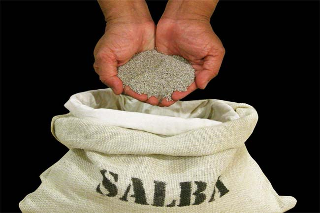 The amazing salba seeds