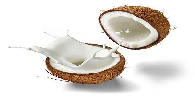 cocunut milk for hair loss