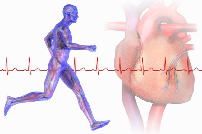 हृ्दय स्वास्थ्य और व्यायाम