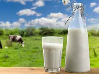 7 Best and worst milks for your heart