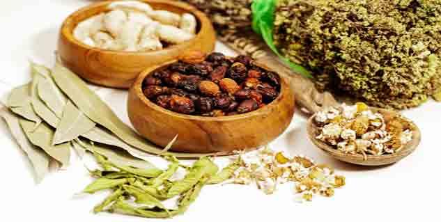 ayurvedic herbs in hindi
