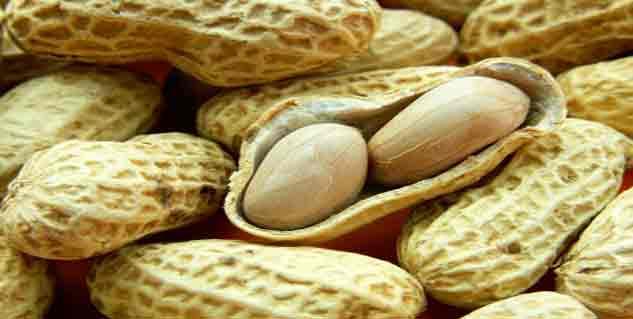 peanut in hindi