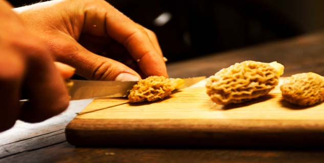 trim morels before cooking
