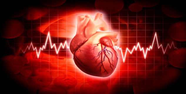heart rate in hindi