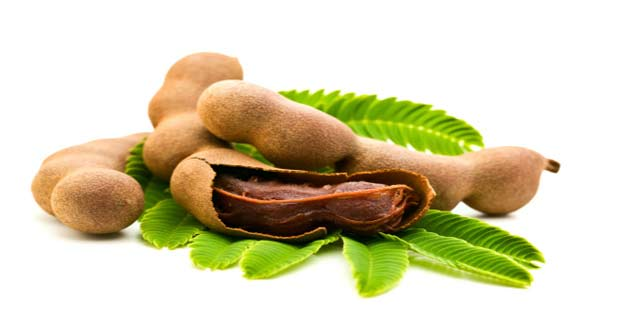 tamarind in hindi