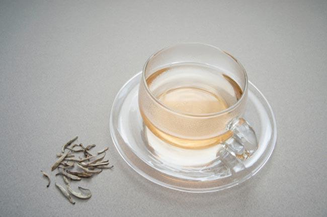 सफेद चाय