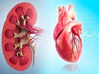 किडनी और दिल को स्वस्थ रखने में मददगार टिप्स