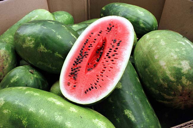 Watermelon Seeds Are Good For You