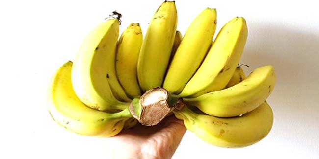 How to lose weight with the help of a banana weight loss