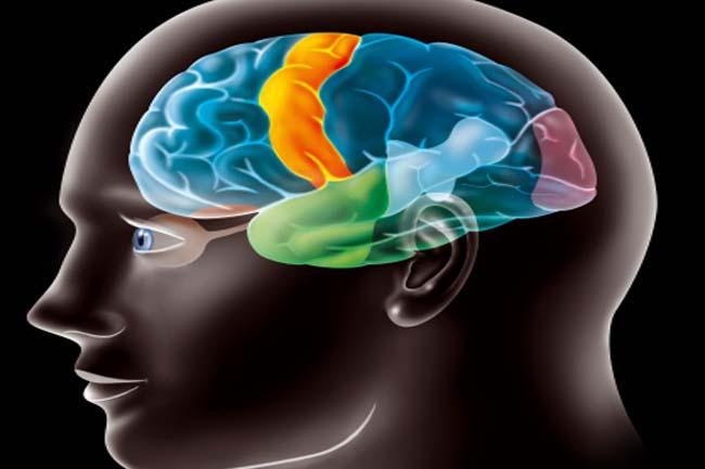 बढ़ती उम्र के साथ तेज़ दिमाग