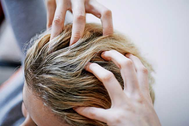 Head/scalp massage