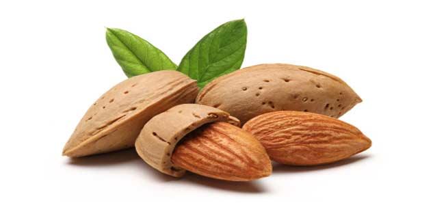 almonds to prevent migraine