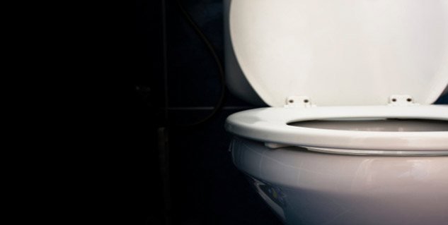 toilet seat in hindi