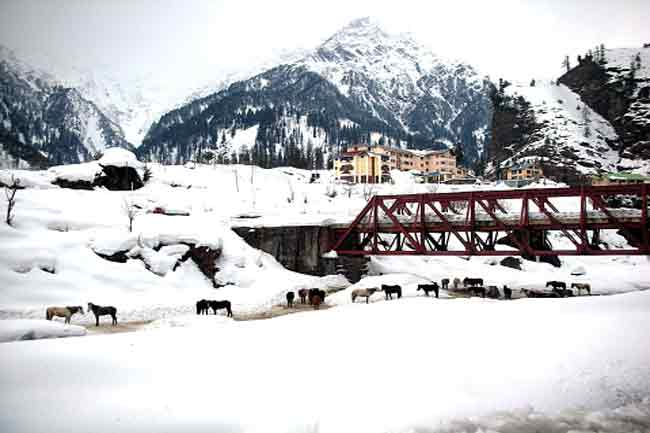 Manali – the nature's party destination