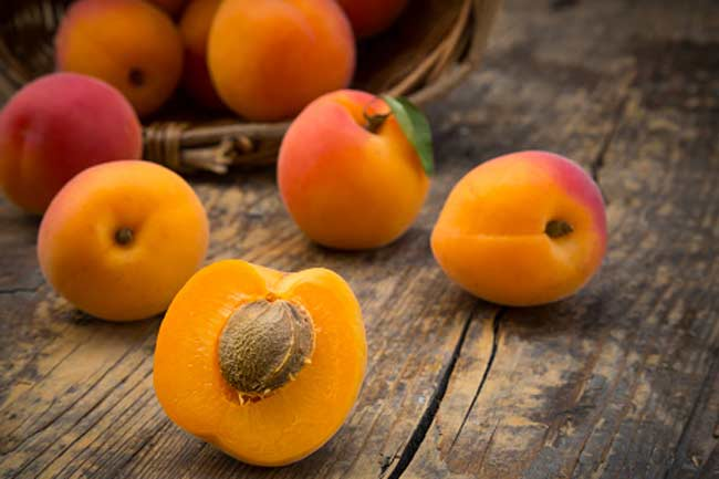 Apricots for new mothers