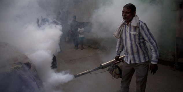 Dengue deaths in delhi