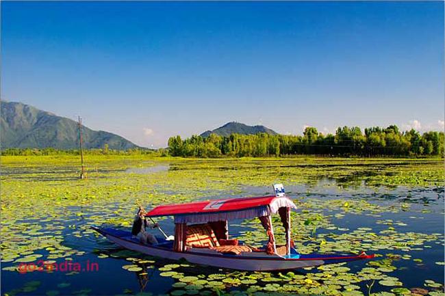 श्रीनगर और गुलमर्ग