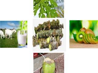 डेंगू में ब्लड प्लेटलेट्स बढ़ाने के लिये क्या खाएं