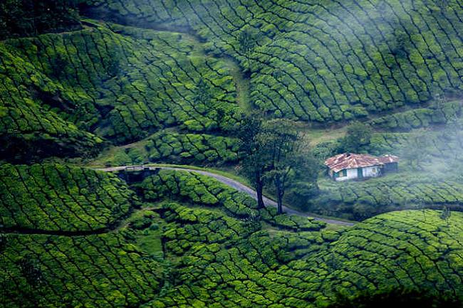 कुर्ग (कर्नाटक)