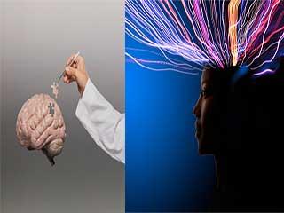 कई जगह बटा होता है हमारे दिमाग का सर्वर
