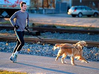 अपने कुत्ते के साथ जॉगिंग के लिए कुछ महत्वपूर्ण सुझाव