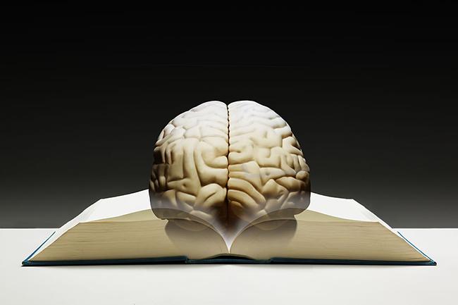 मस्तिष्क में घोटाला